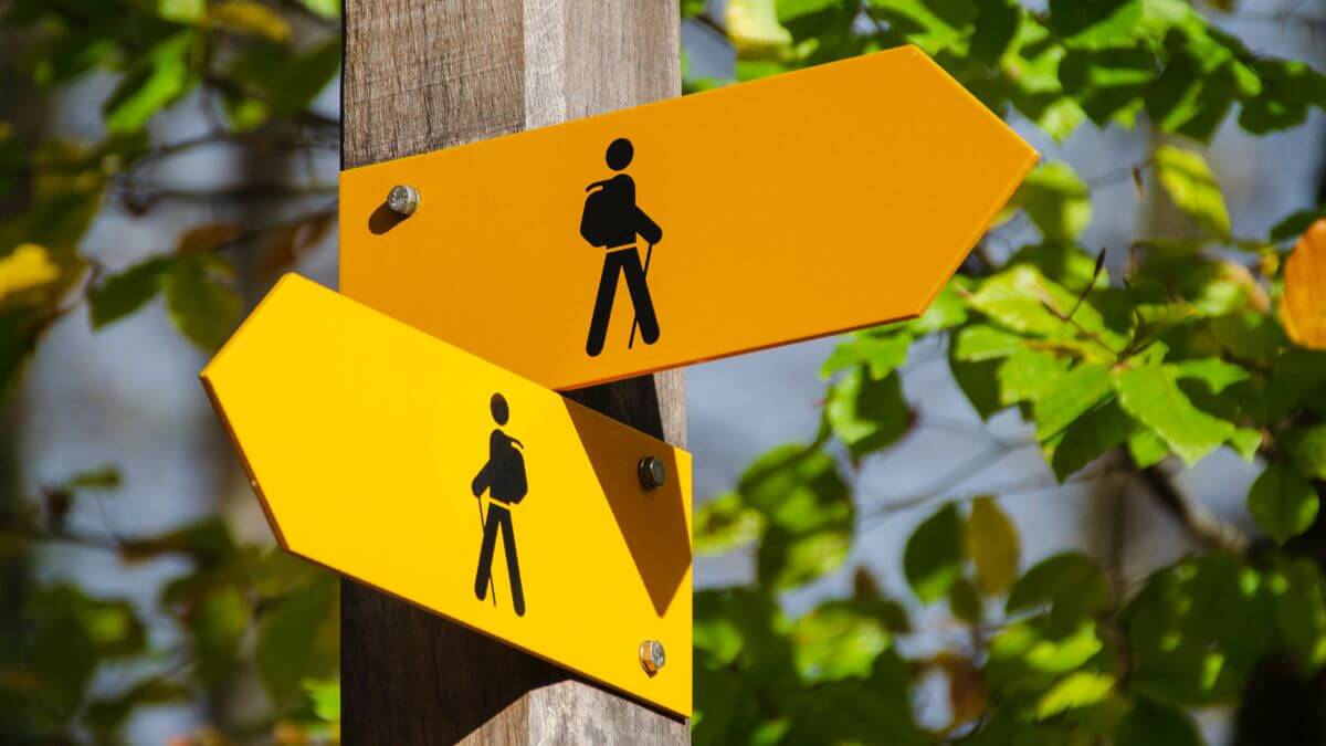 signpost offering 2 routes